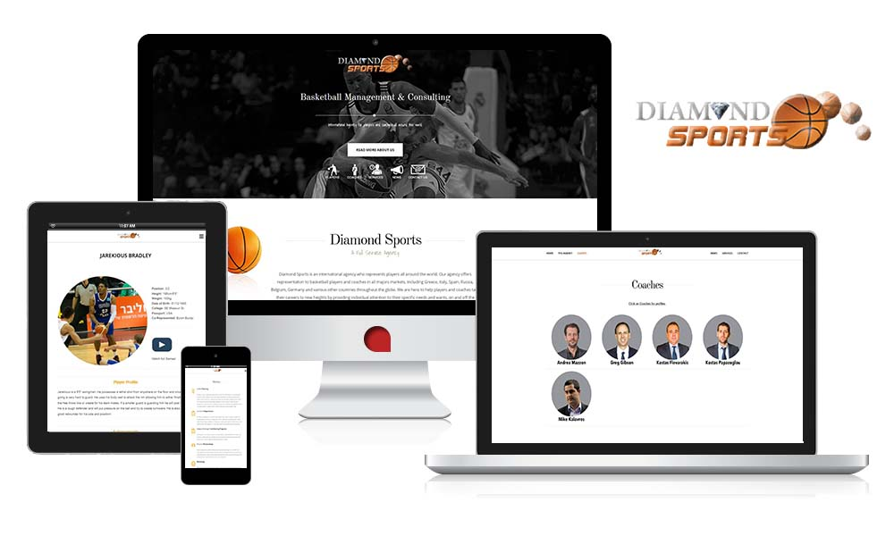 the web empire case study fully responsive web design diamond sports